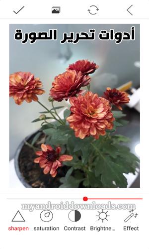 أدوات تحرير الصور في برنامج انفرتر