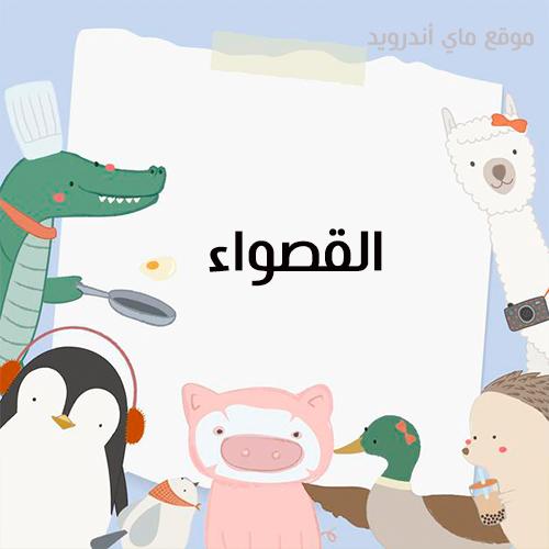 اسئلة رمضانية واجابتها للاطفال